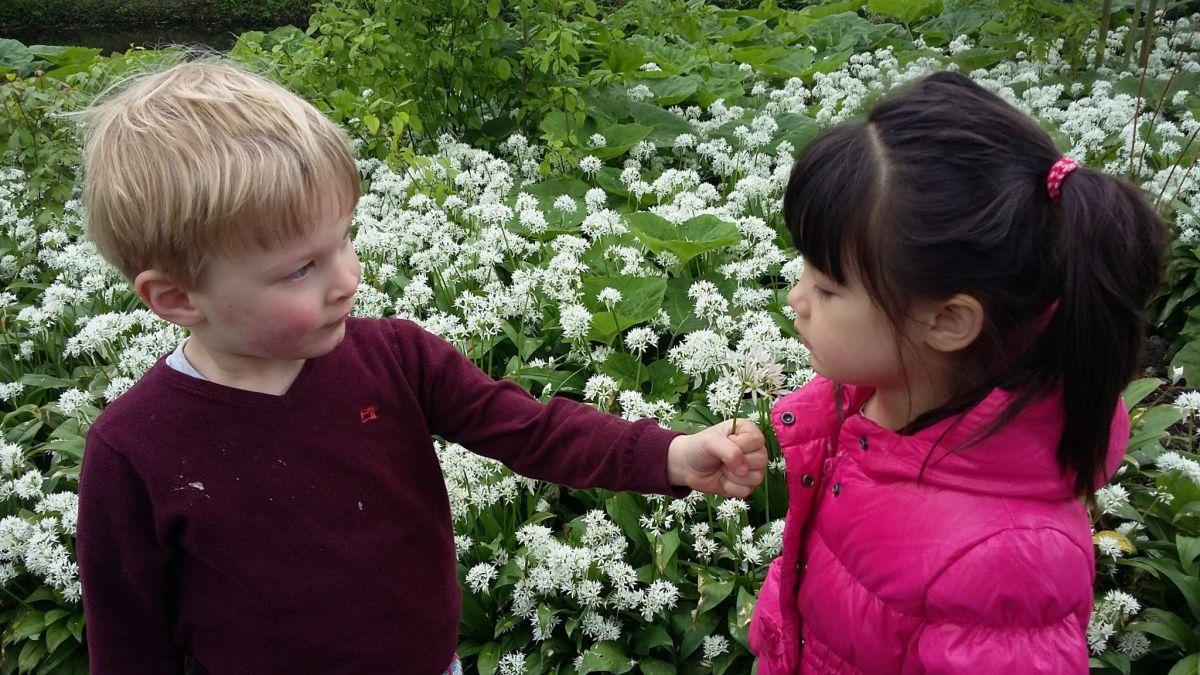 Bloementuin kijken jillz kinderdagverblijf amstelveen for Www bloem en tuin nl